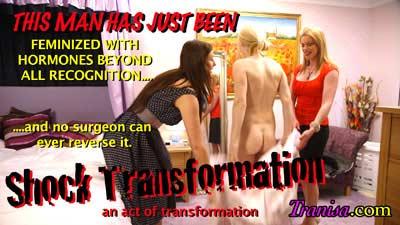 hormone feminization